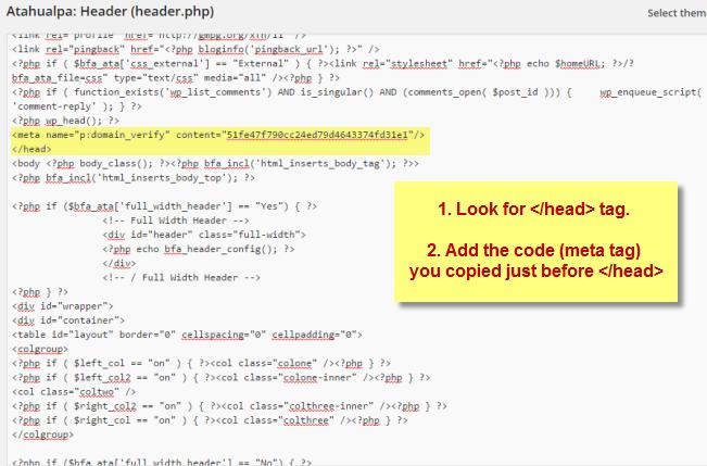 Paste meta tag code